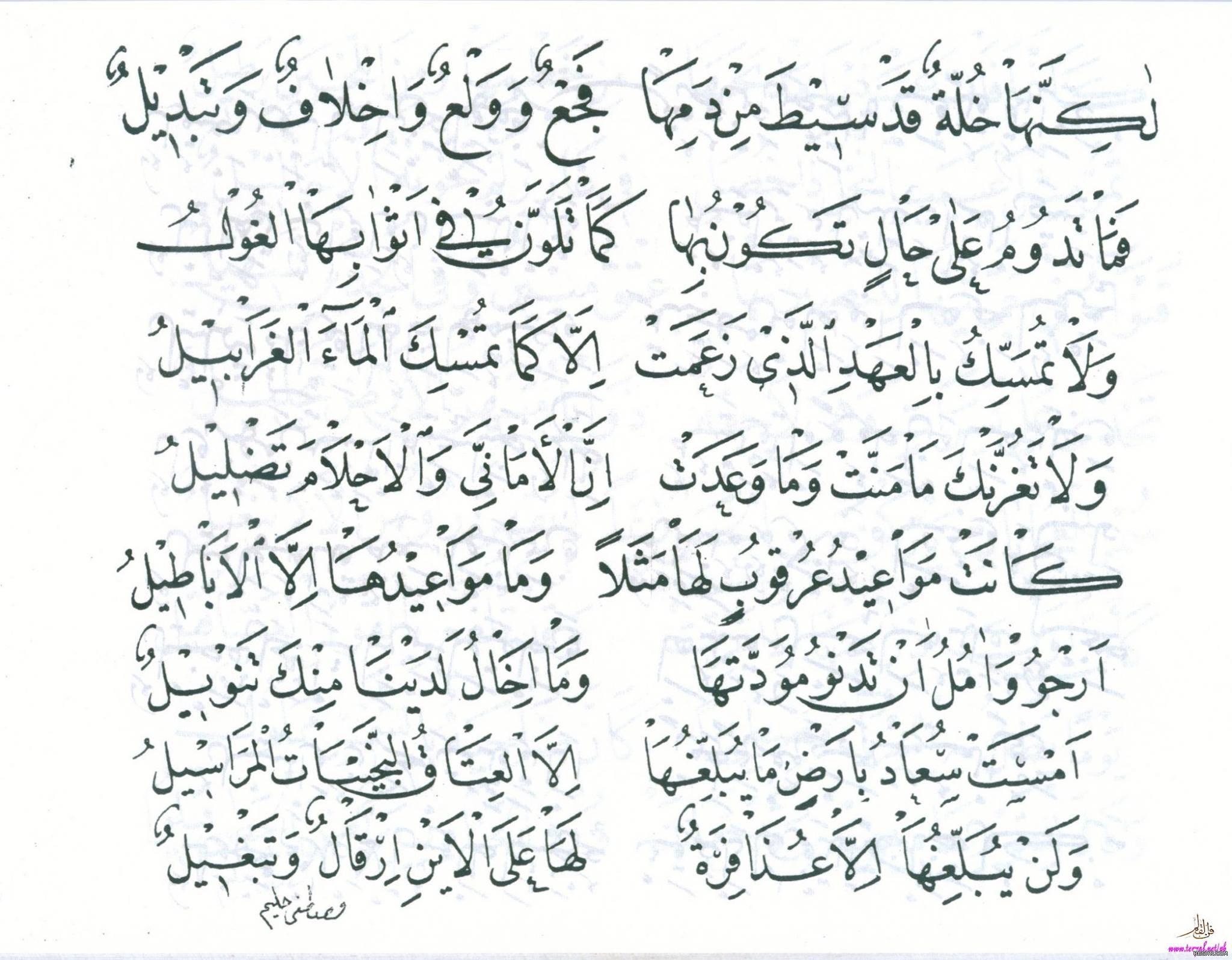 قصيدة بانت سعاد لكعب بن زهير رضي الله عنه بخط مصطفى حليم 1