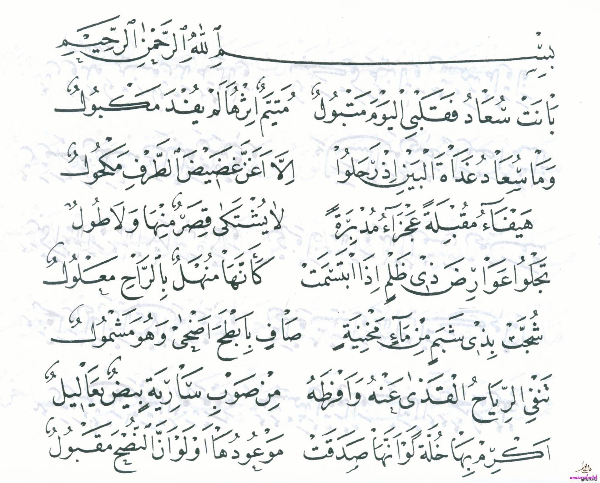 قصيدة بانت سعاد لكعب بن زهير رضي الله عنه بخط مصطفى حليم 2