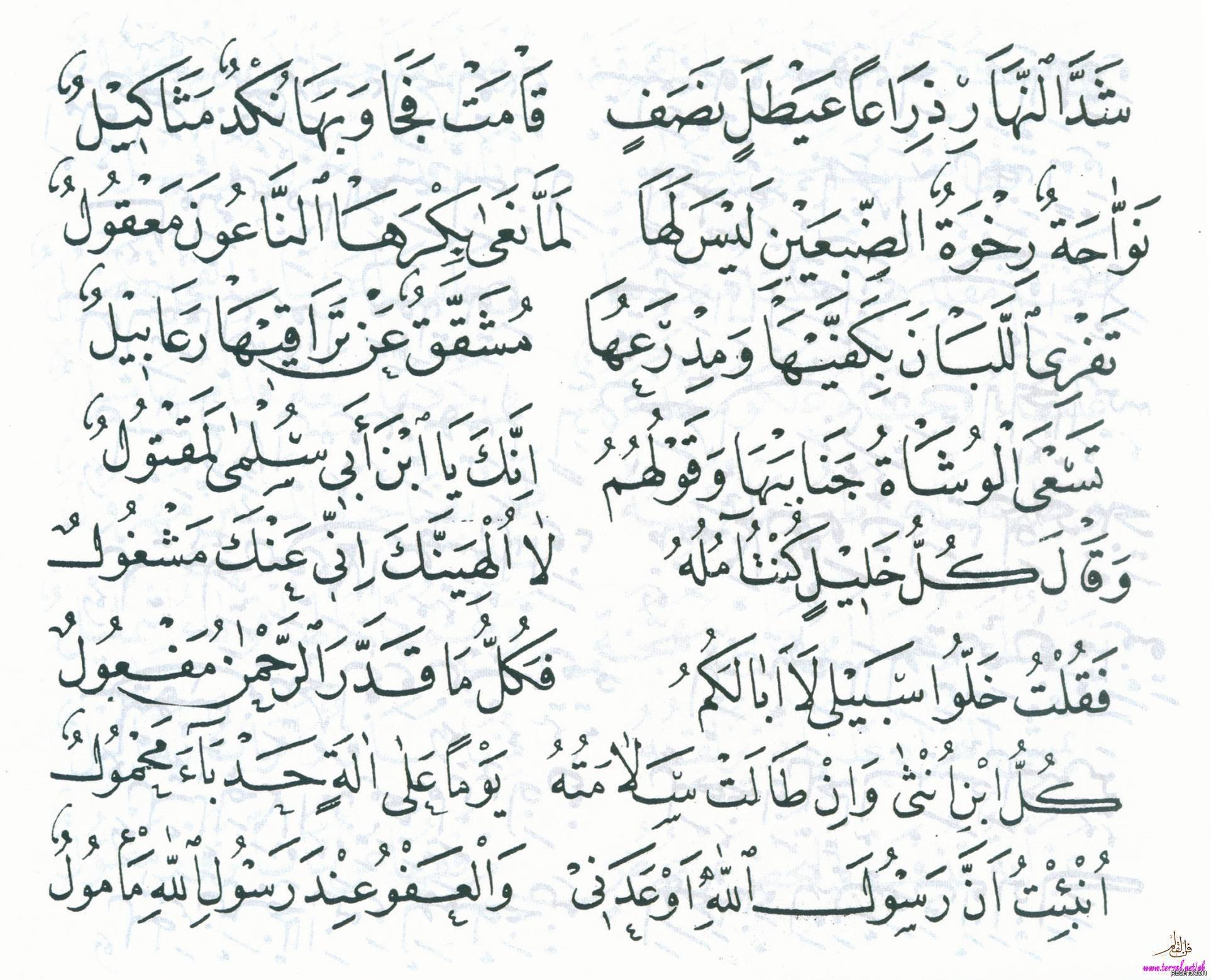 قصيدة بانت سعاد لكعب بن زهير رضي الله عنه بخط مصطفى حليم 4