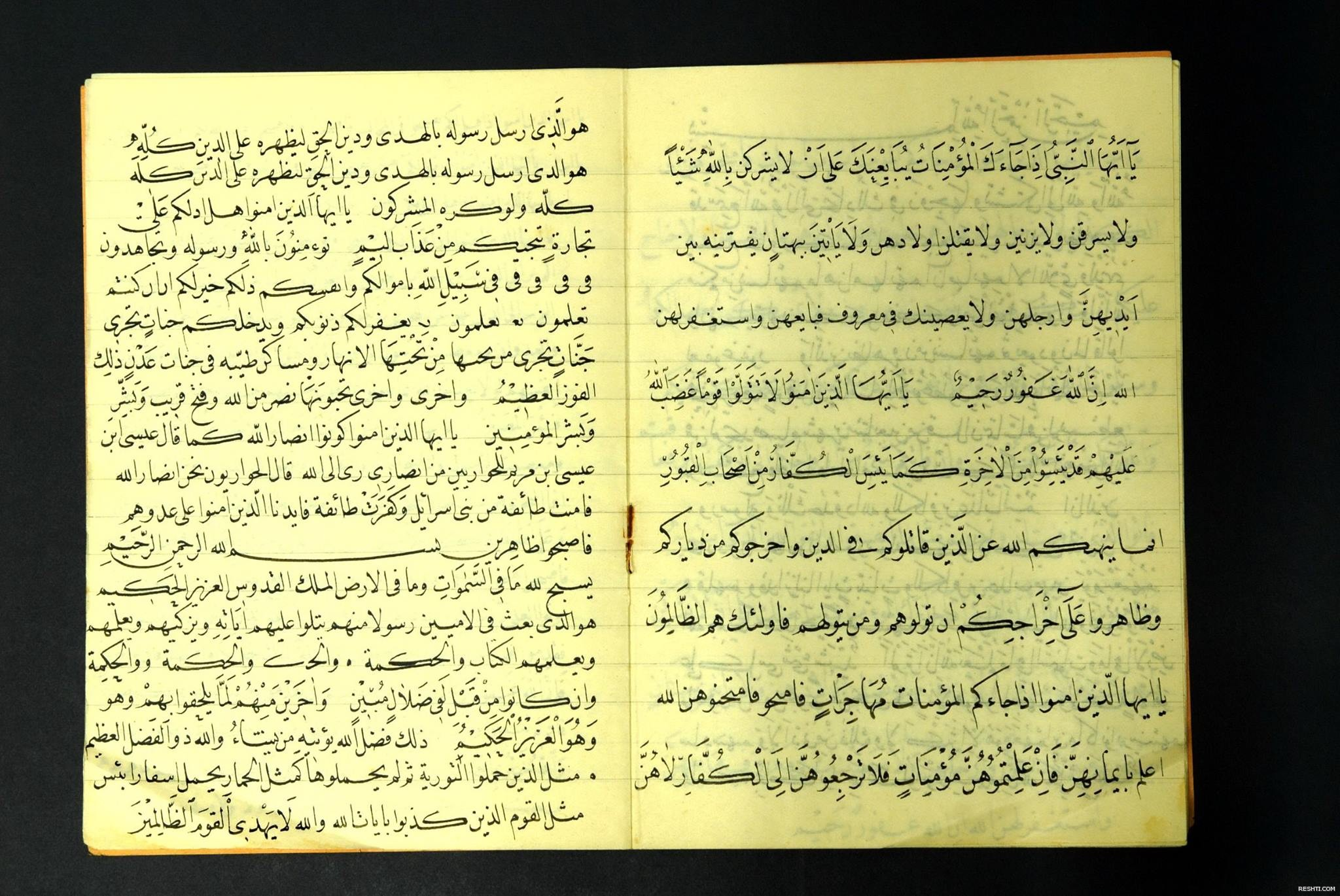 مصطفى حليم اوزيازجي