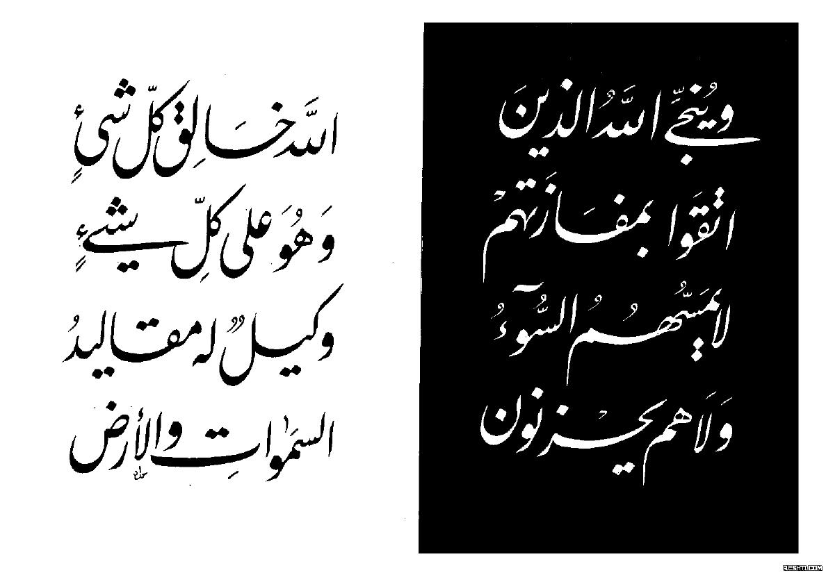 كتاب الحروف المستديرة - محمد سعد حداد