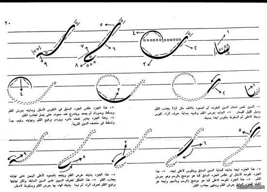 كراسة الديواني المصري - سعد غزال